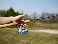 Весенняя рыбалка: выбираем катушки для ультралайтового спиннинга