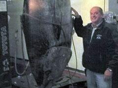 Рибалка виловив рекордного 400-кілограмового тунця